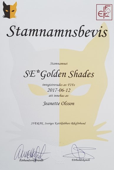 SE* Golden Shades